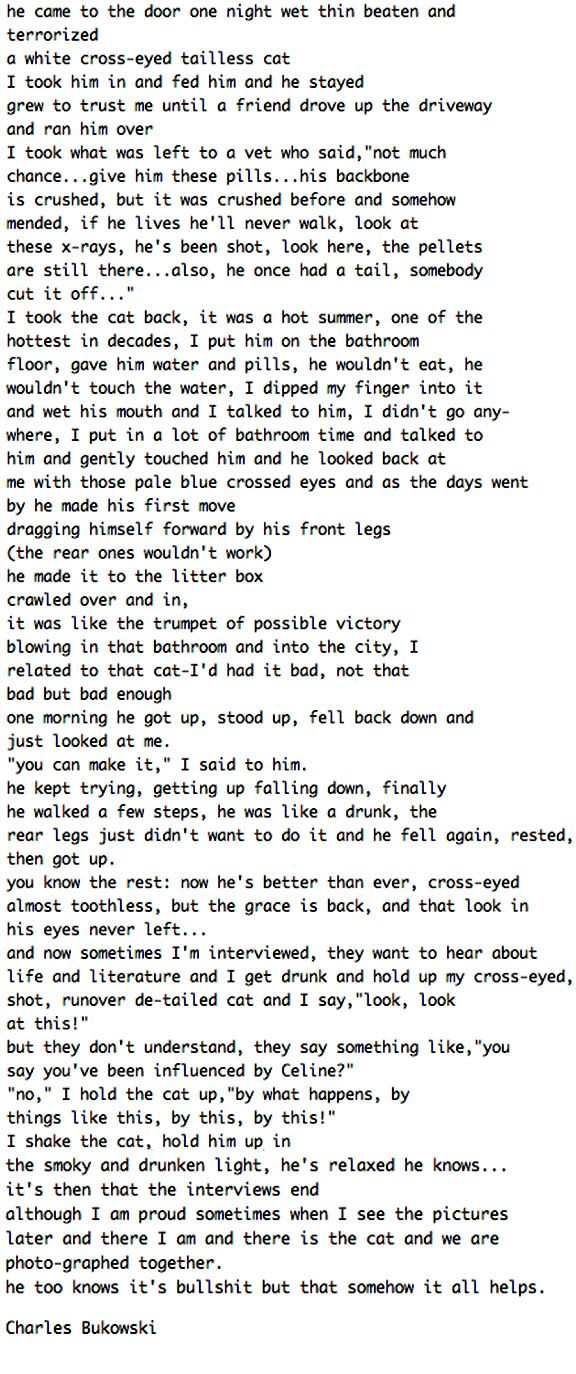 [Image] History of one Tough Motherfucker by Charles Bukowski. I keep coming back to this poem.