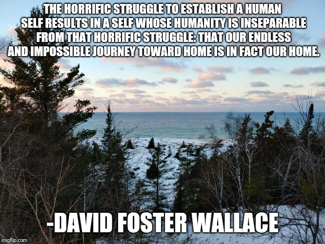 """The Horrific Struggle…"" -David Foster Wallace [666 × 500]"