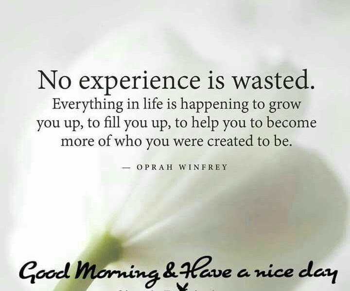 [image] No experience is wasted