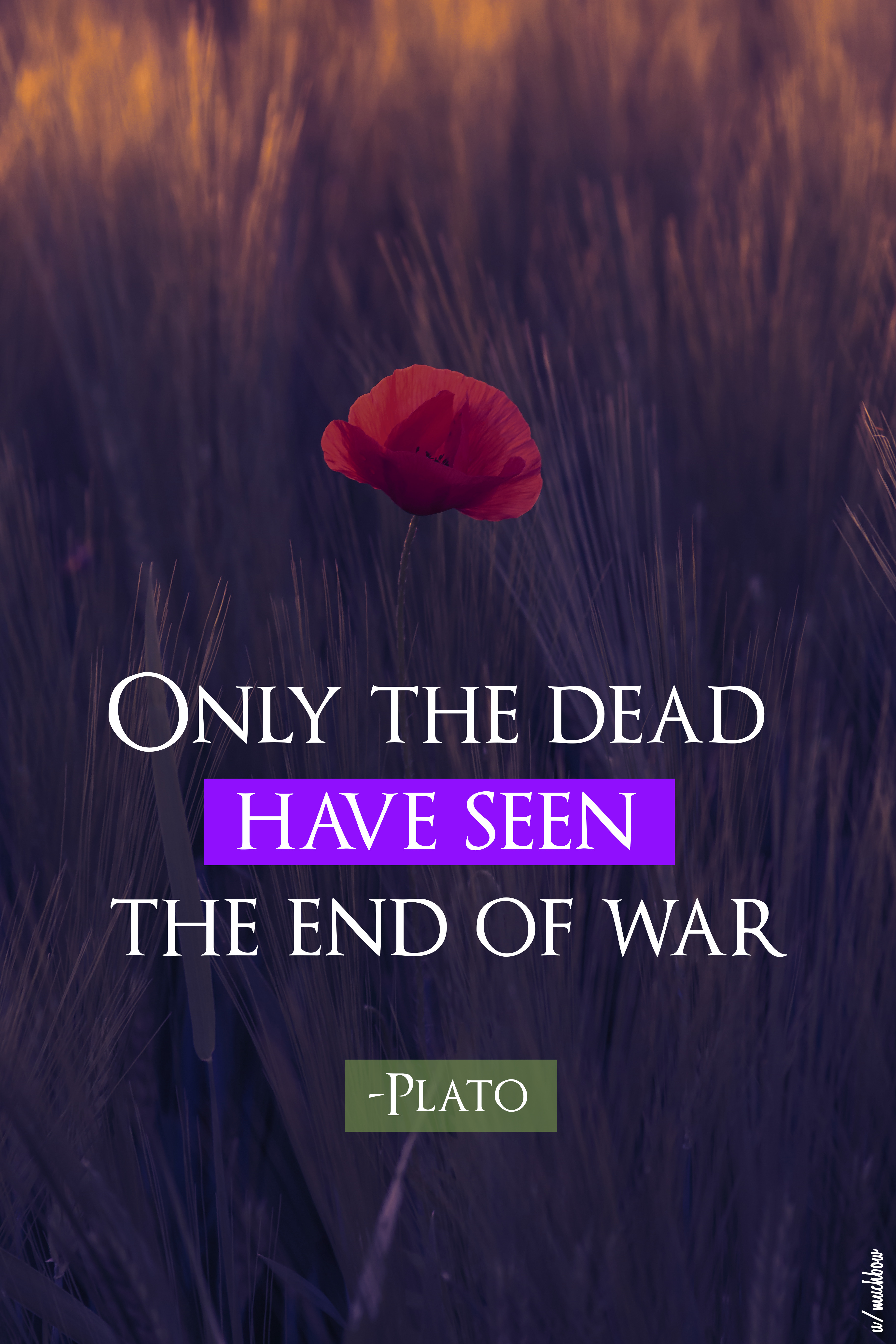 """Only the dead have seen the end of war."" – Plato [3648×5472] [OC]"