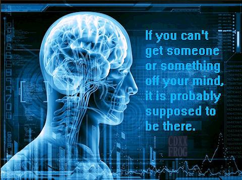 If you can't get something off your mind, it is probably supposed to be there. ~CDXX-Frog [480×357]