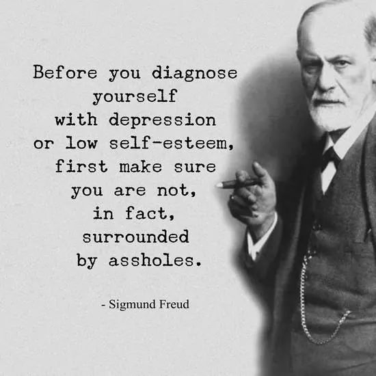 Before you diagnose yourself with depression or low self-esteem, first make sure you are not, in fact surrounded by assholes. -Sigmund Freud (750×750)