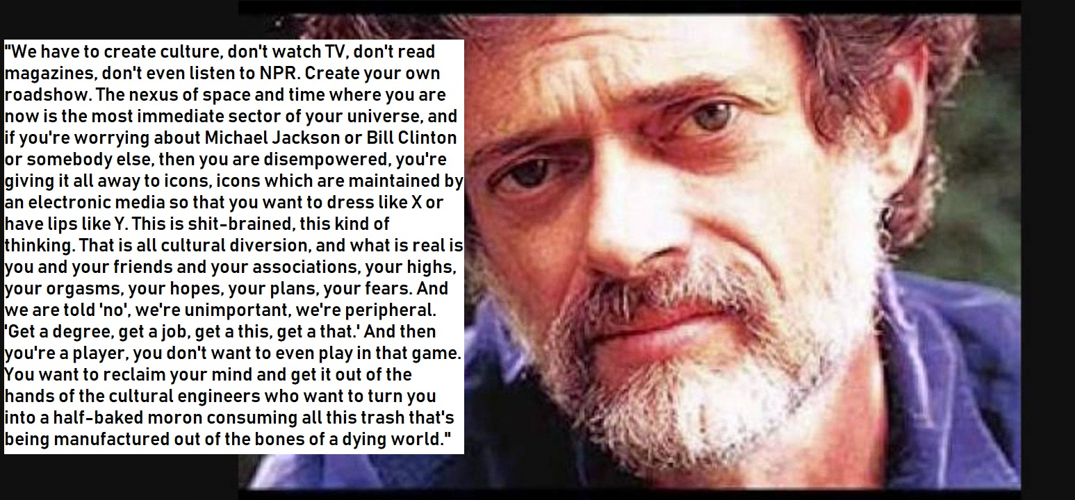 "[OC] ""We have to create culture"" – Terence Mckenna [1547 x 720]"