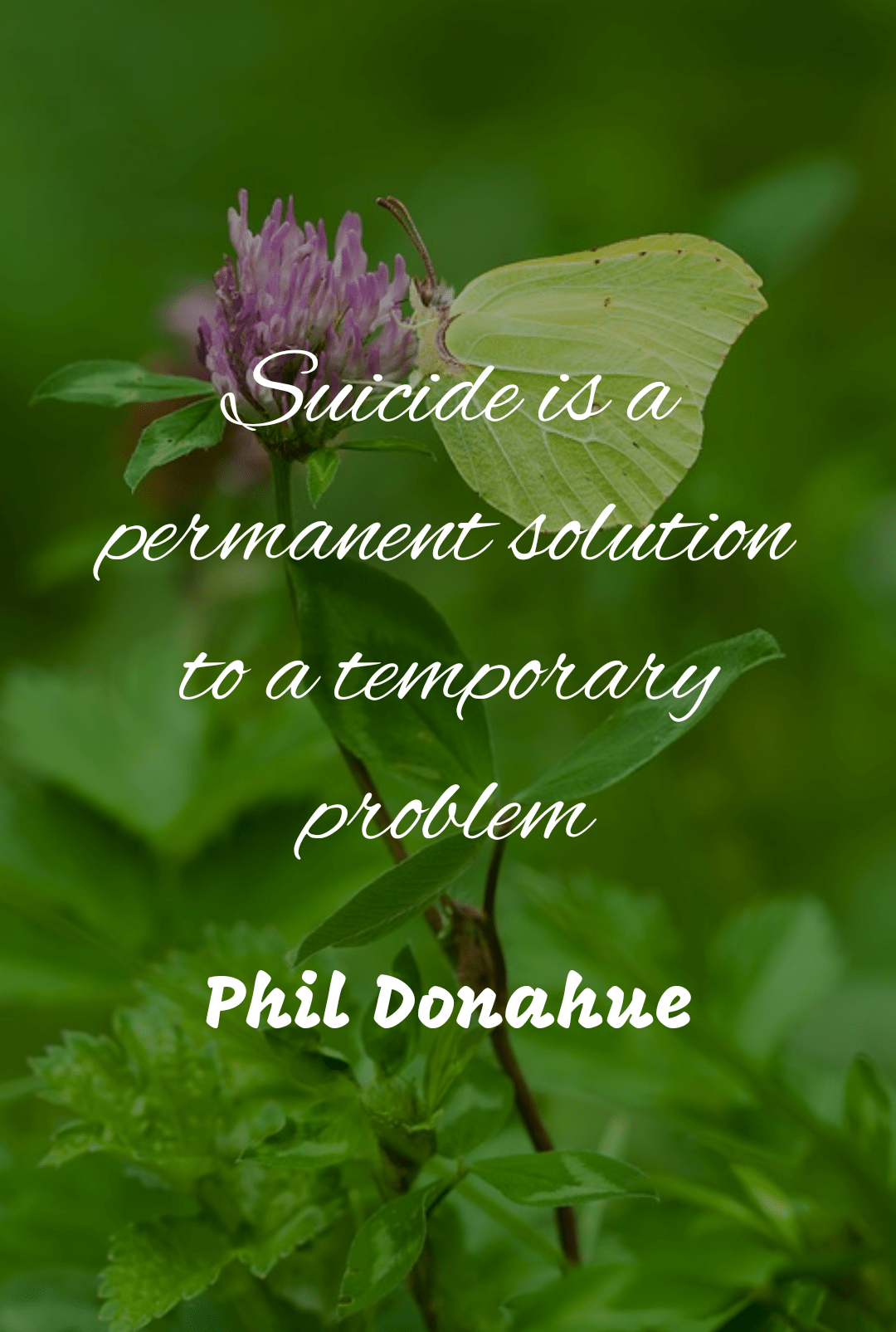 """Suicide is a permanent solution to a temporary problem"" – Phil Donahue [1080×1605]"
