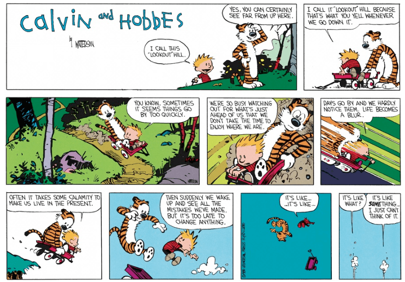 [Image] Great advice from Calvin and Hobbes.