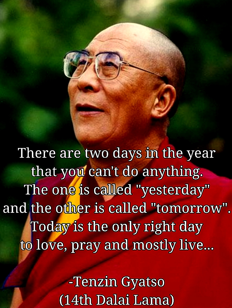 """There are two days in the year that your can't do anything. and the other is called """"tomorrow"""". Tocygy is the only right day no love, pray and mostly live... -Tenzin Gyatso 3* (14th Dalai Lama) https://inspirational.ly"""