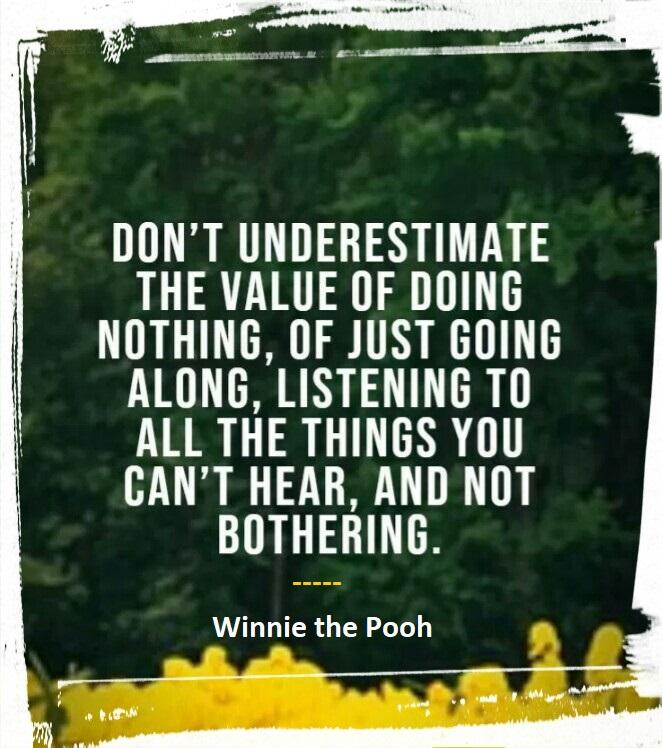 """Don't underestimate the value of Doing Nothing, of just going along, listening to all the things you can't hear, and not bothering"" ― Winnie the Pooh. [662×748]"