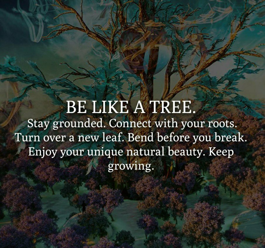 [Image] be like a tree