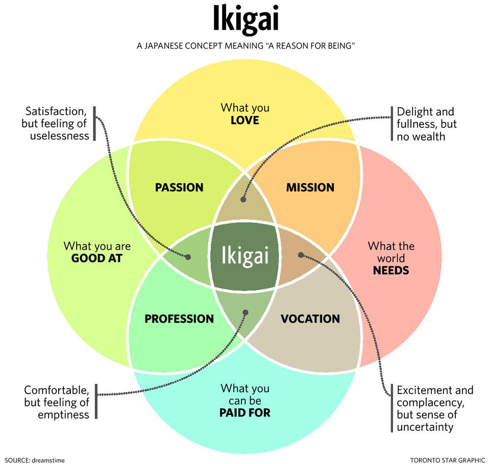 [Image]find your ikigai.