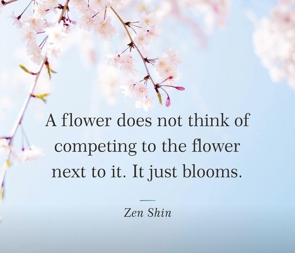 [image] Just 🌸