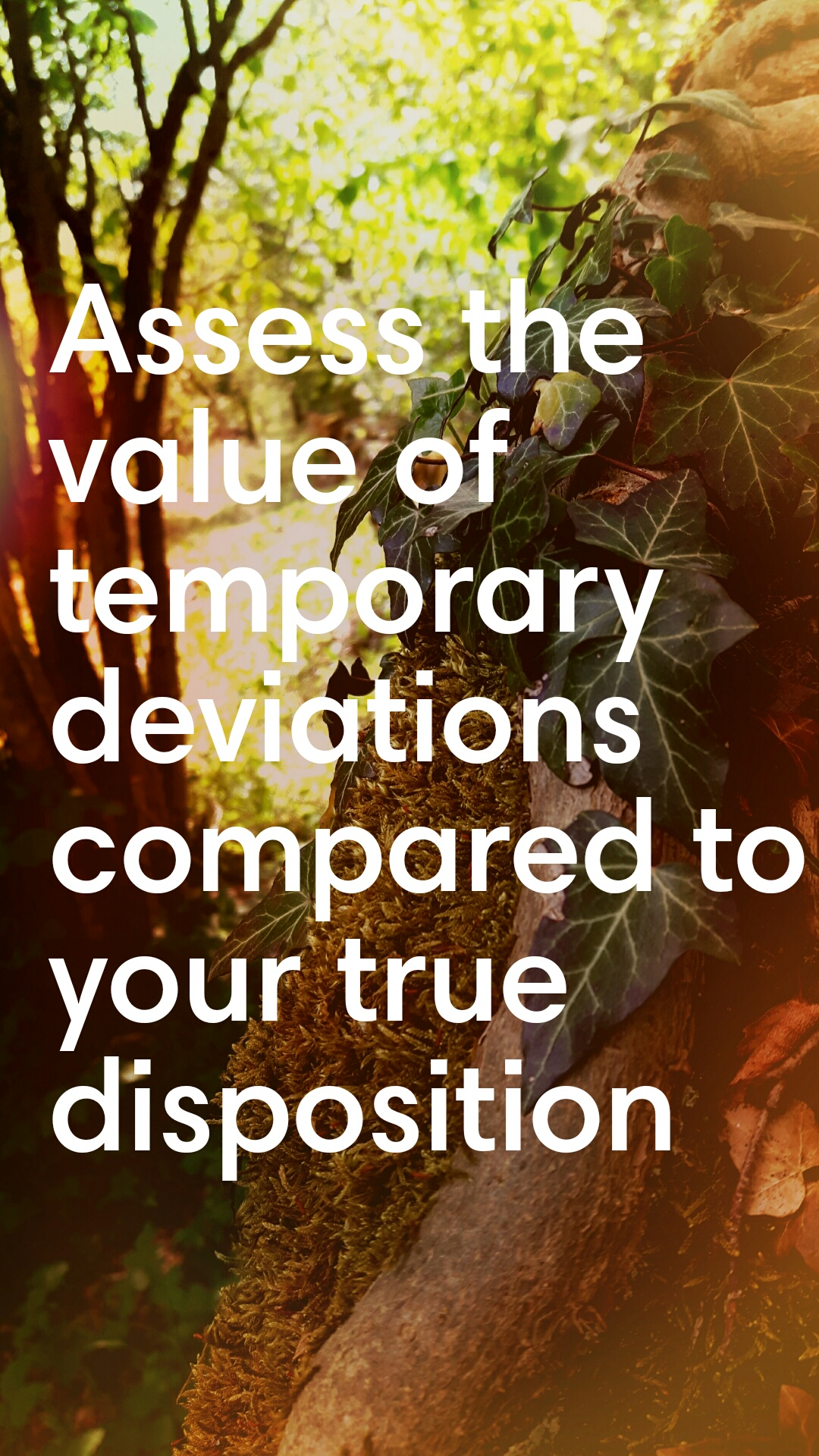 Assess the value of temporary deviations compared to your true disposition (1080×1920) [OC] – tehpwn3dlife