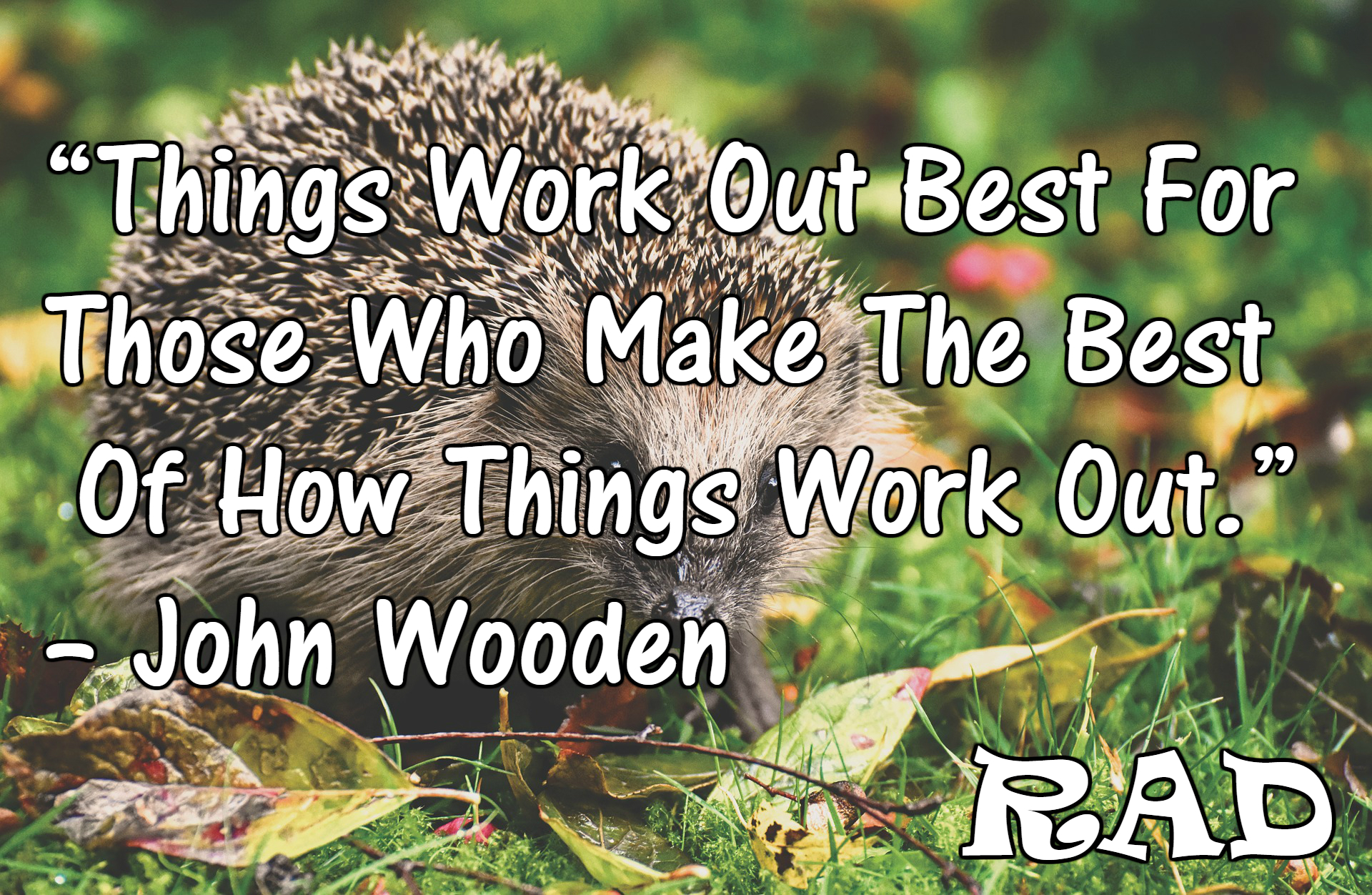 """Things work out best for those who make the best of how things work out.""–John Wooden [1920*1252]"