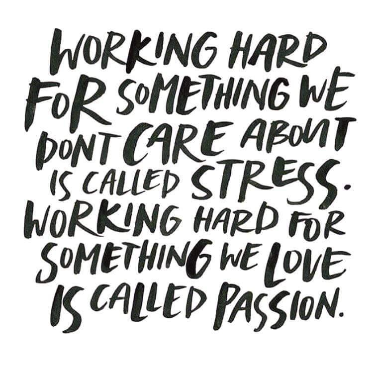[Image] Working hard