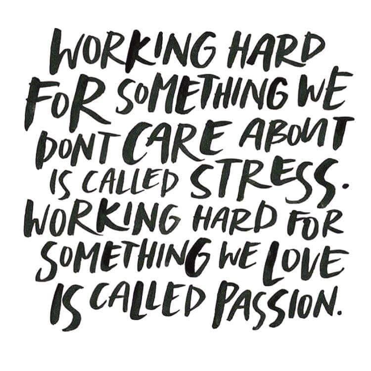 [Image] Working hard