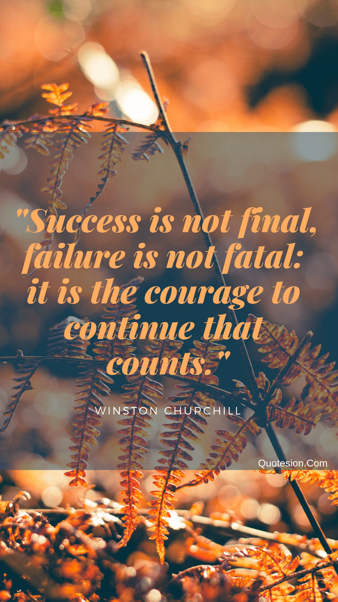 """Success is not final, failure is not fatal: it is the courage to continue that counts"" -Winston Churchill- [1920×1080]"