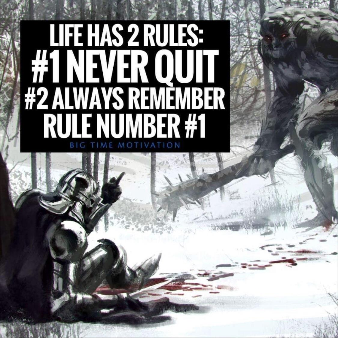 [Image] Life has 2 rules: [OC]