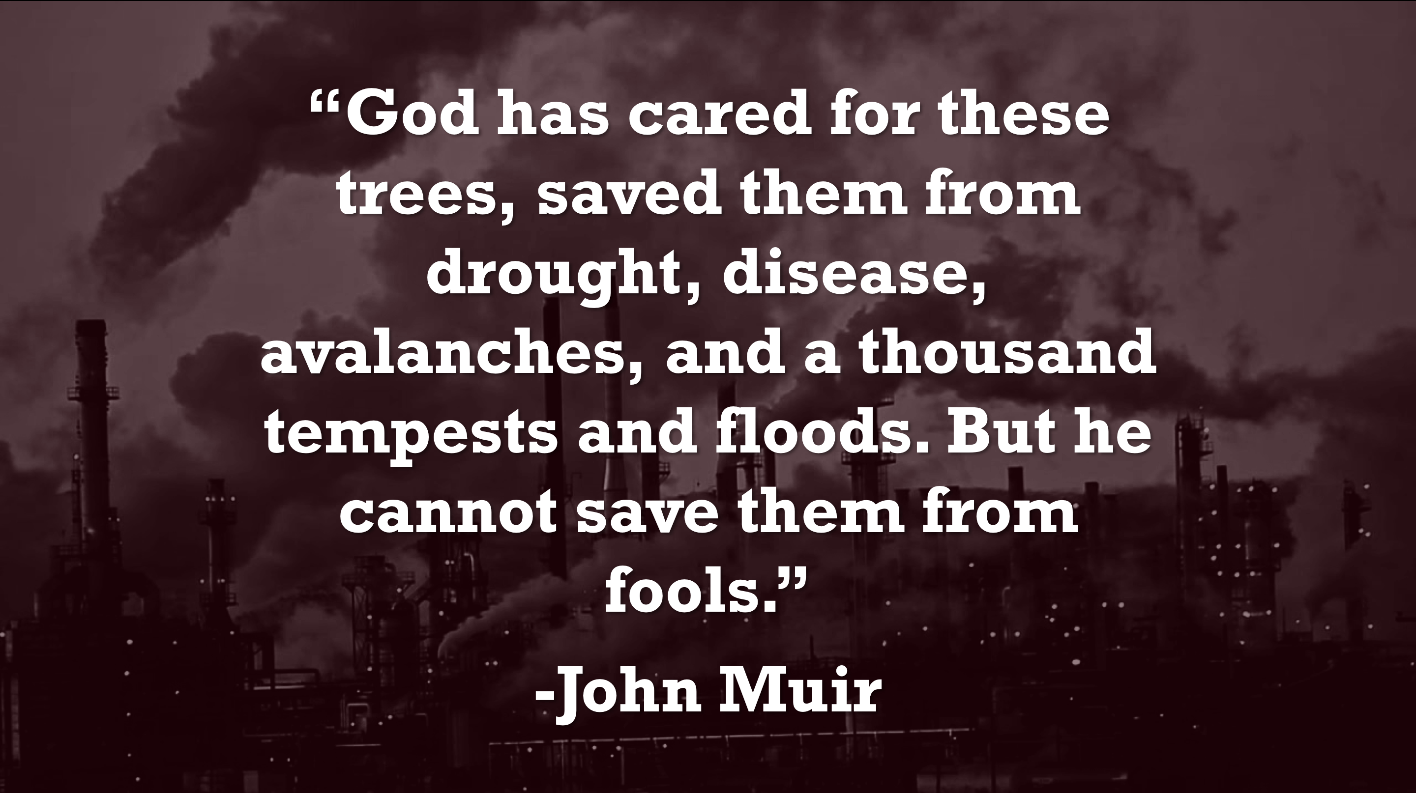 """God has cared for these trees…"" -John Muir [2880×1614]"