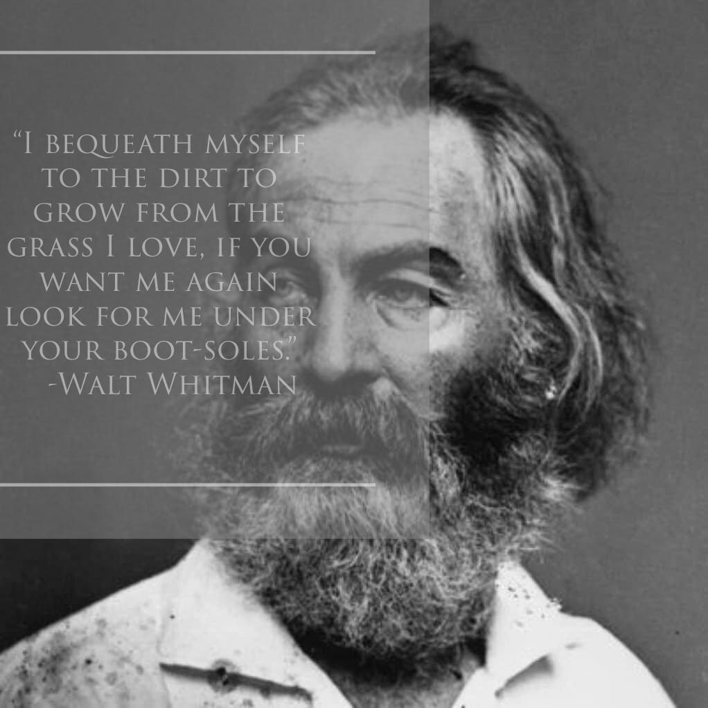 """""""I bequeath myself to the dirt to grow from the grass I love. If you want me again, look for me under your boot-soles."""" -Walt Whitman [960×960]"""
