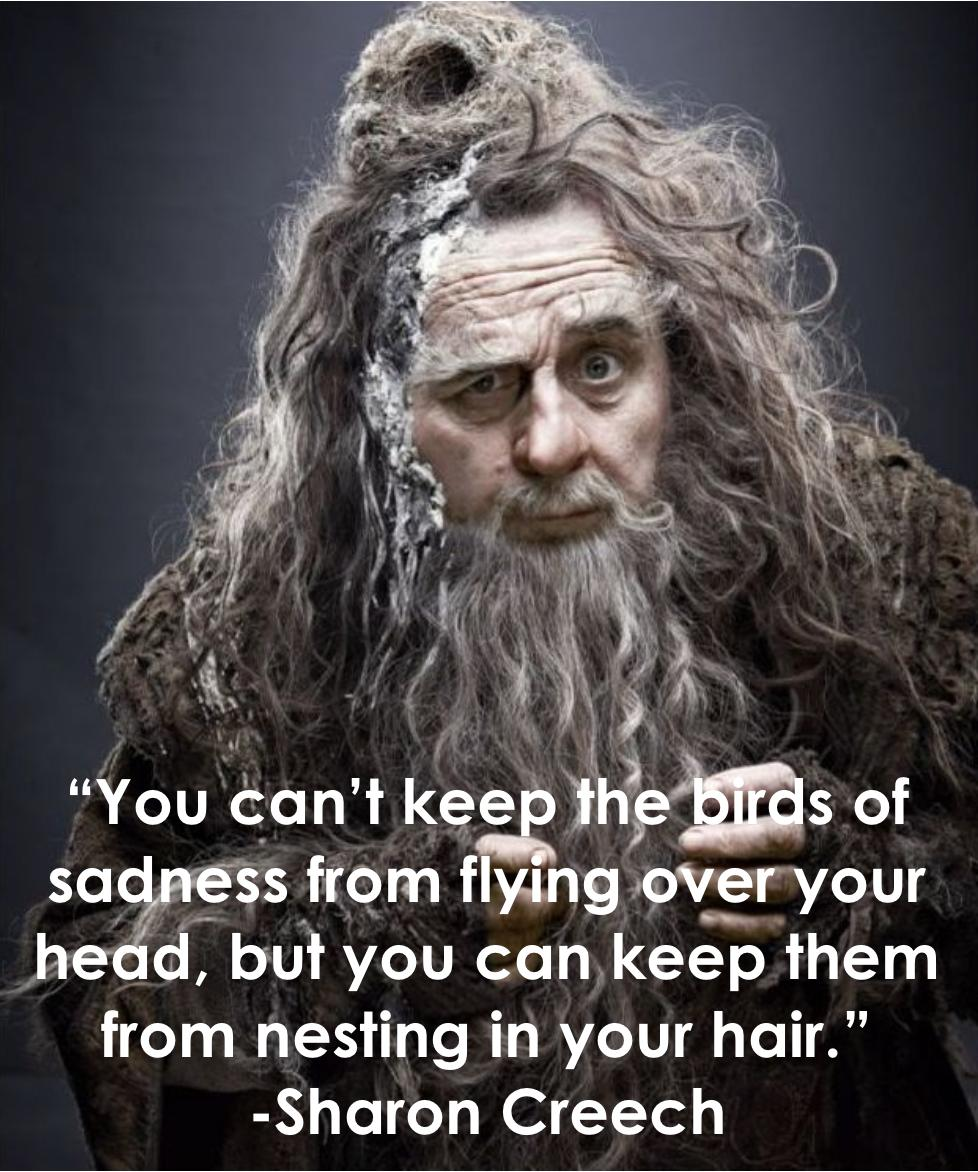 """You can't keep the birds of sadness from flying over your head…"" -Sharon Creech [601×721] OC -Sharon Creech"