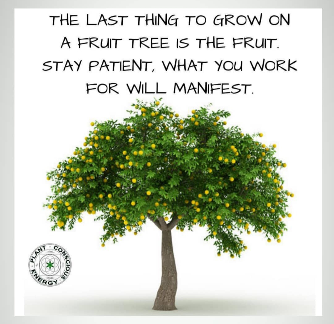 [Image] Dedication and patience will ultimately bring success