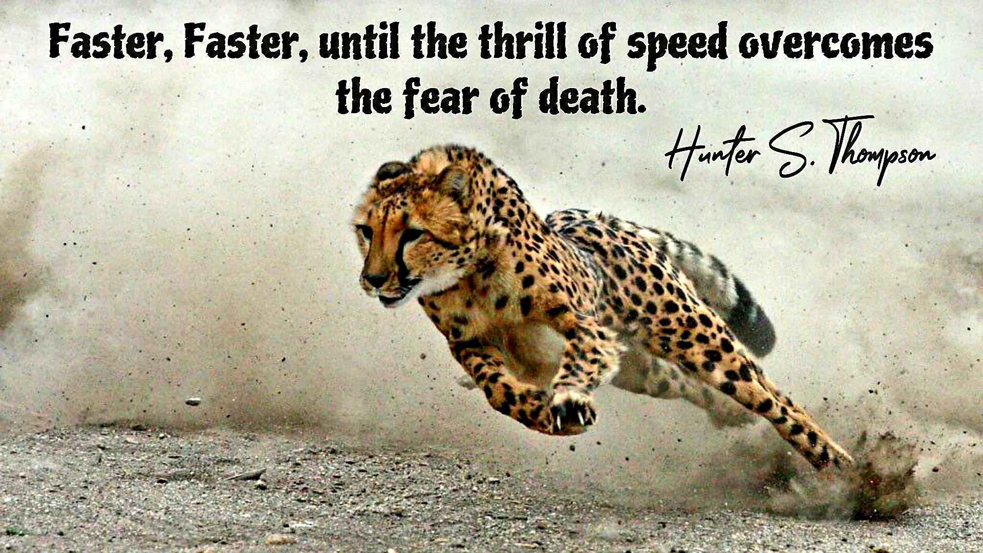 """Faster, faster, until the thrill of speed overcomes the fear of death."" – Hunter S. Thompson [1920×1080]"
