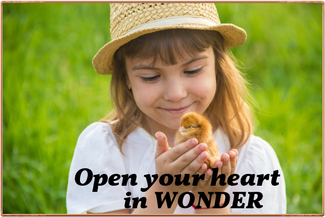 [Image] Open Your Heart in WONDER – So you can feel like the joyful child you used to be. That uplifting energy can take you to WONDERful places.