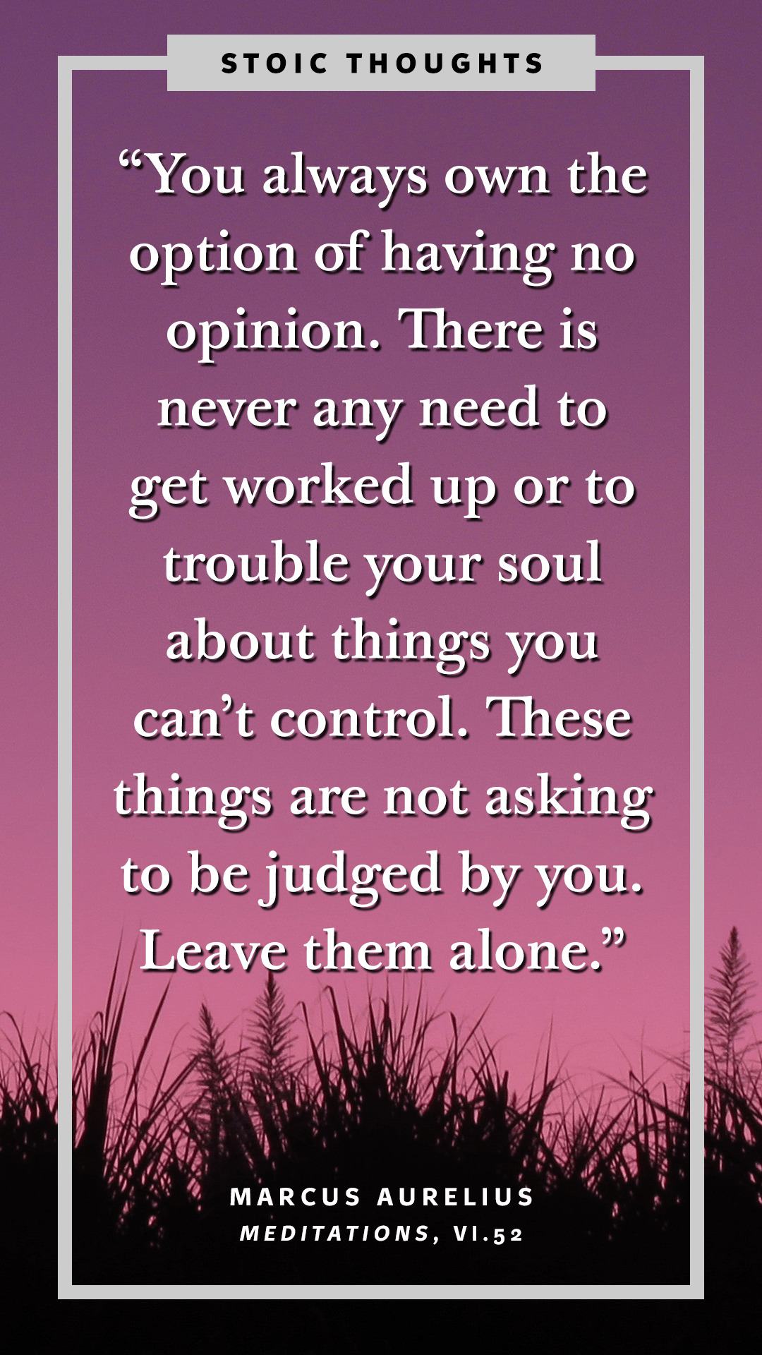 """You always own the option of having no opinion. Things you can't control are not asking to be judged by you. Leave them alone."" — Marcus Aurelius (121–180 ᴄ.ᴇ.) [1080×1920 px] [OC]"