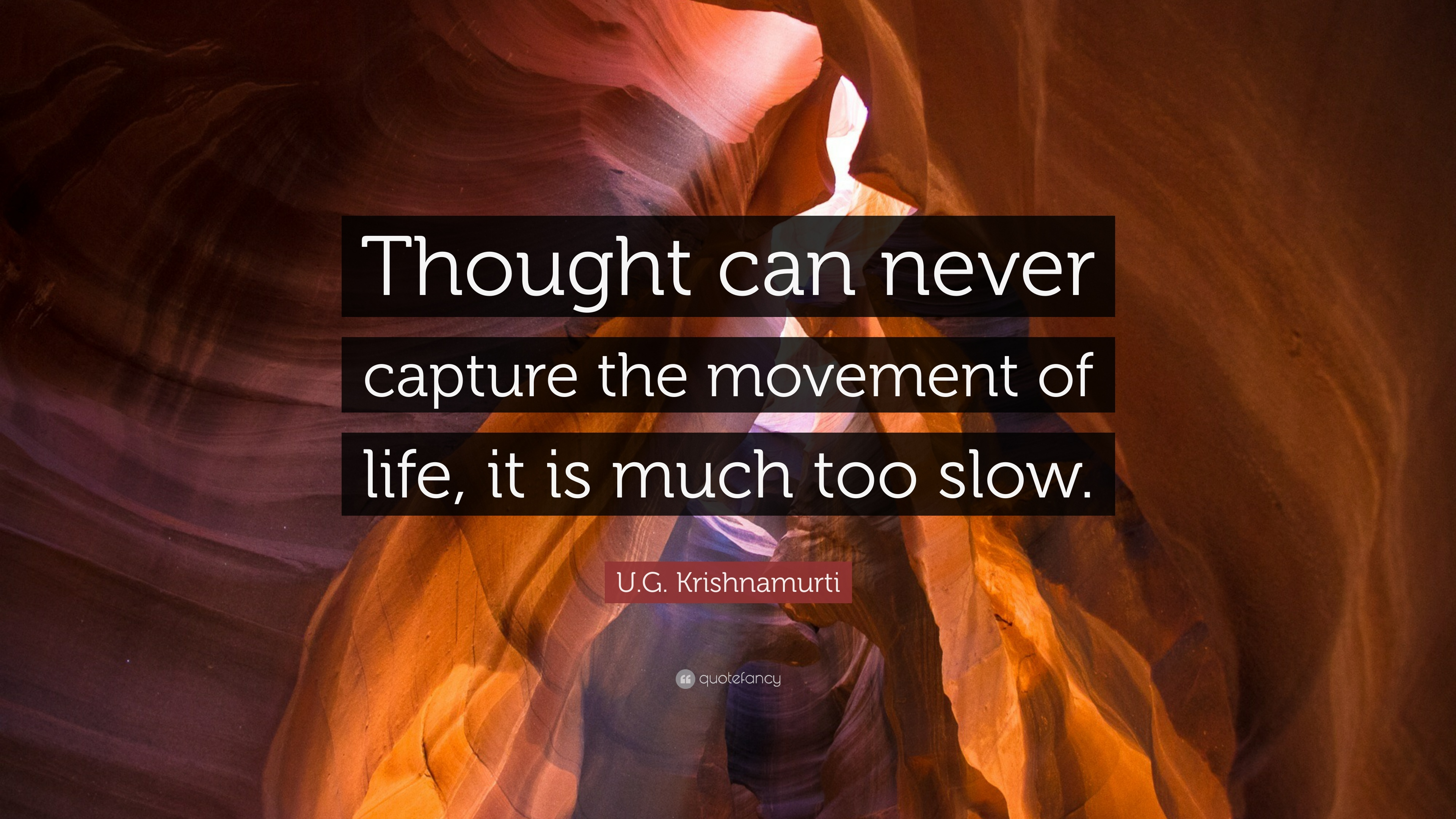 """Thought can never capture the movement of life, it is much too slow."" – U.G. Krishnamurti [3840 X 2160]"