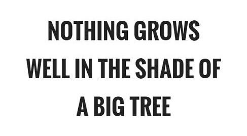 NOTHING GROWS WEll IN THE SHADE DE A https://inspirational.ly