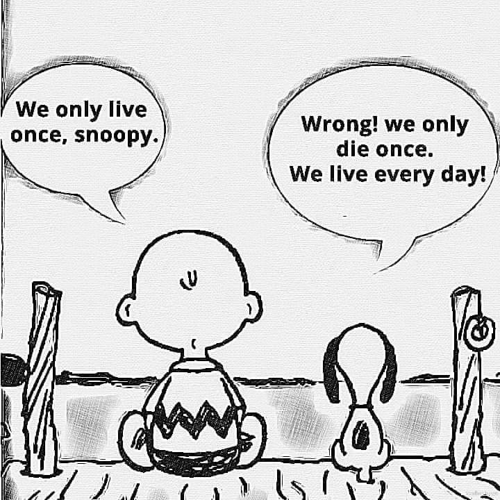 [IMAGE] We live every day…so make it count!
