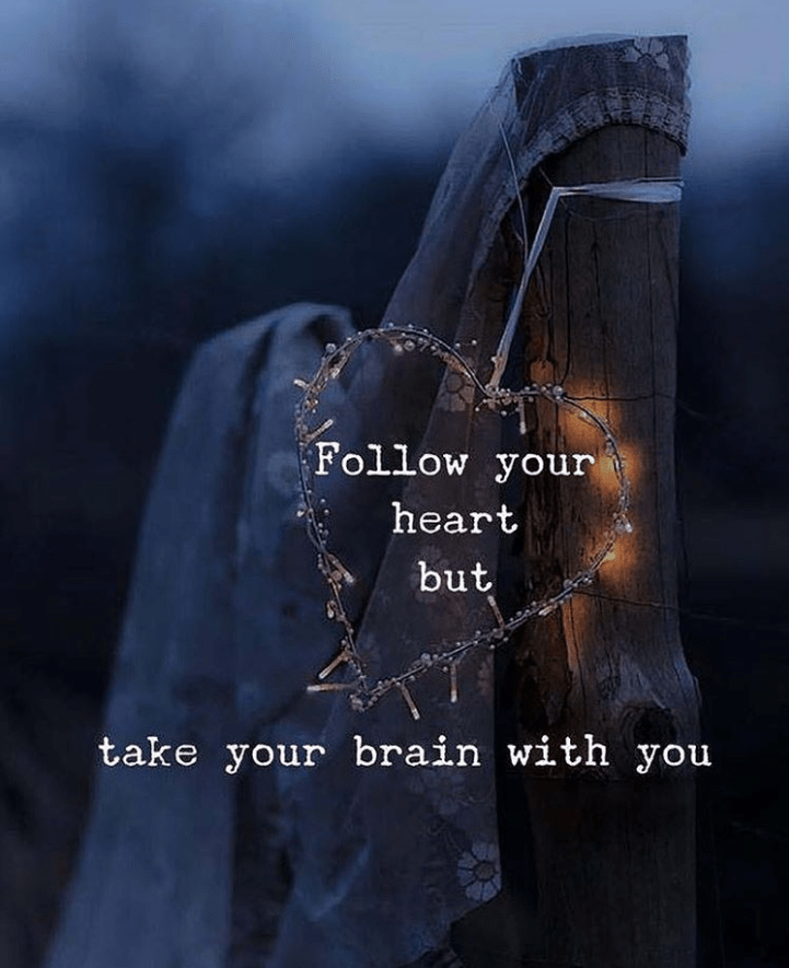 "e r. s l I."" d I 'Follow you take your brain with you - .""  J I,' s V / .ifléz. ; an https://inspirational.ly"