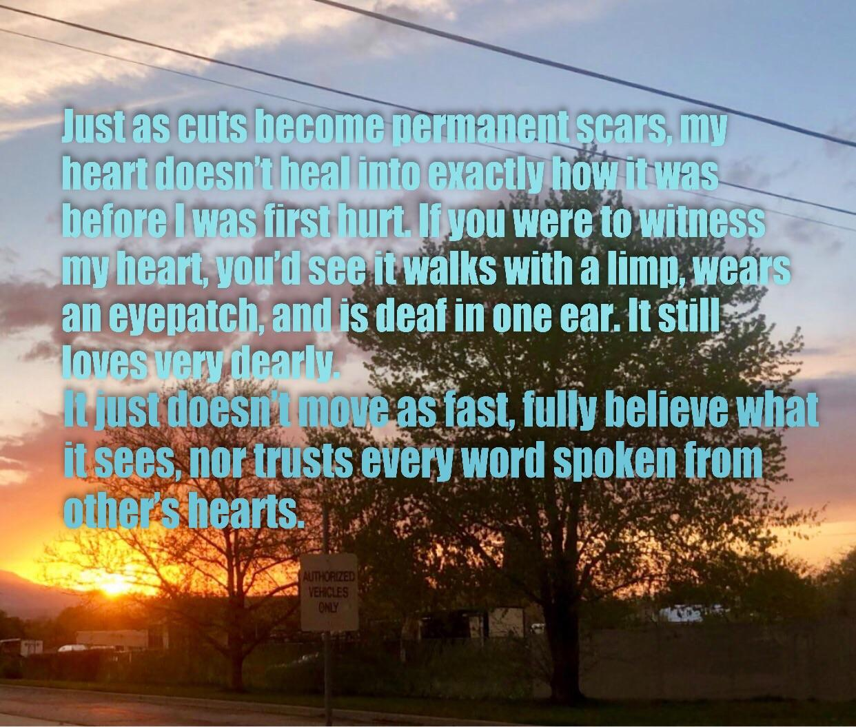 """Just as cuts become permanent scars, my heart doesn't heal into exactly how it was before I was first hurt."" – Maxwell Parker Greenbaum [1242 × 1055] (OC)"
