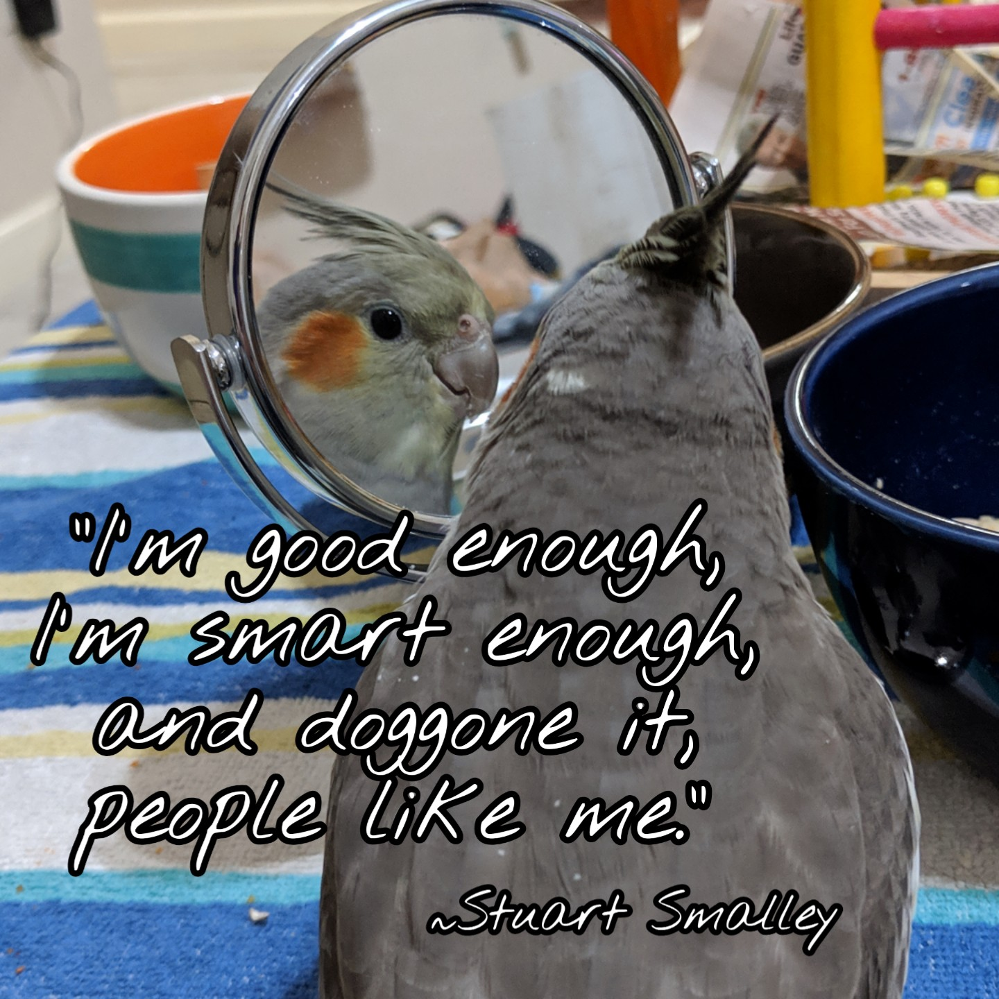 """I'm good enough, I'm smart enough, and doggone it, people like me."" ~ Stuart Smalley (aka Al Frankin) [OC] [1080 x 1080]"