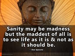 Sanity may be madness but the maddest of all is to see life as it is and not as it should be. – Don Quixote [960×720]