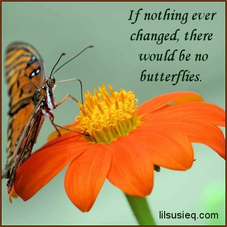 If nothing ever changed, there would be no butterflies. (455 x 455) Unknown