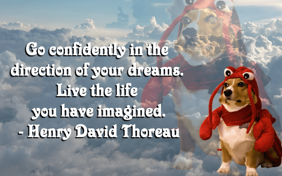 """Go confidently in the direction of your dreams…"" – Henry David Thoreau [960×600]"