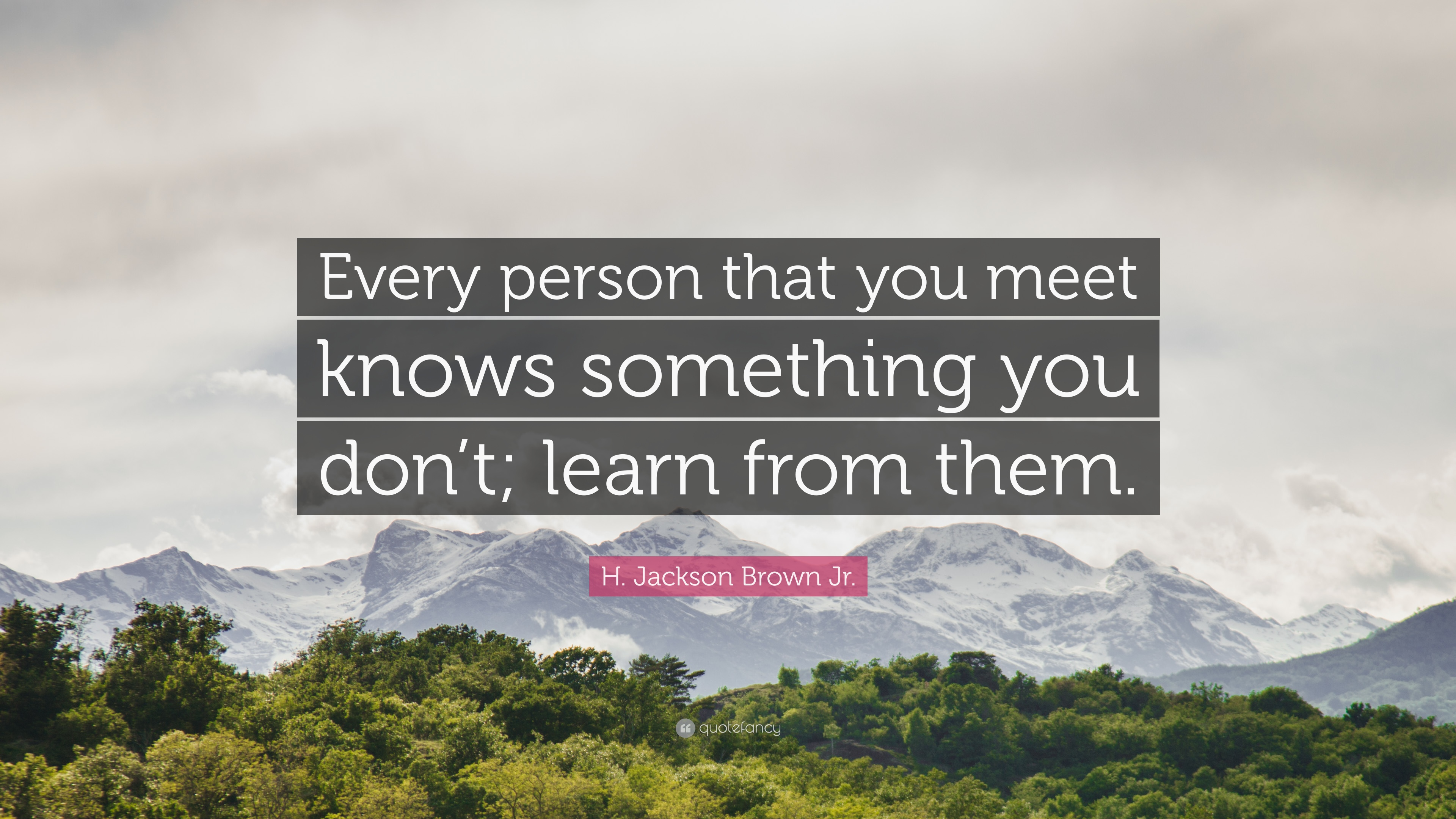 """Learn from them."" ~H. Jackson Brown Jr. [3840×2160]"