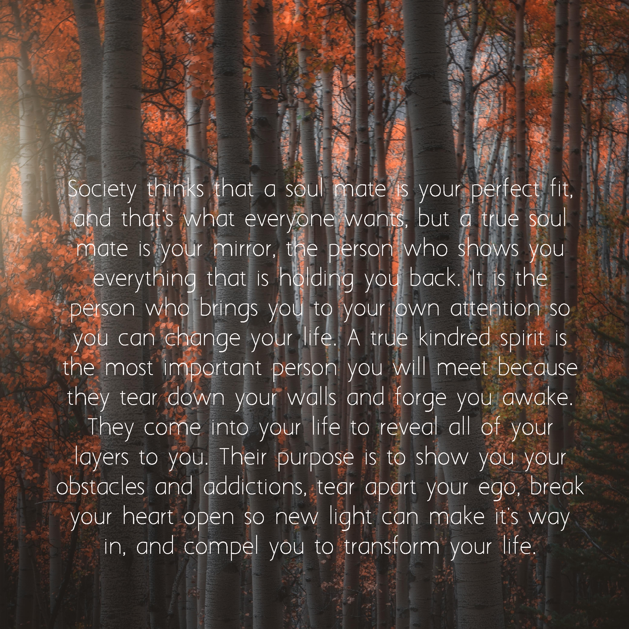 """ . . . They come into your life to reveal all of your layers to you. . "" Anonymous. [2048×2048]"
