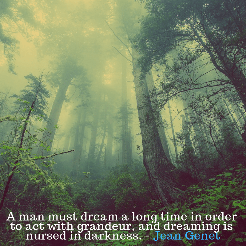 A man must dream by Jean Genet [800 x 800]