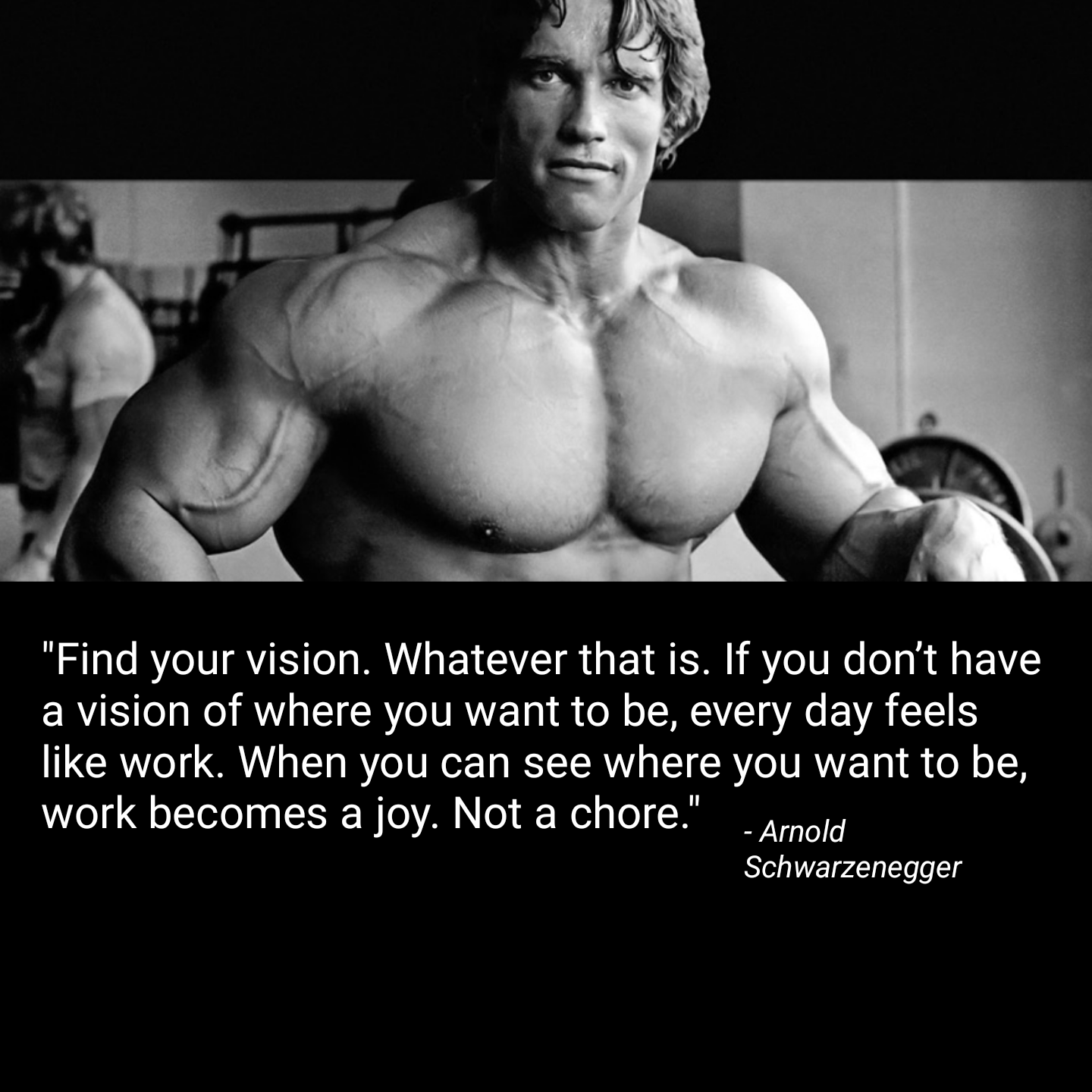 """…When you can see where you want to be, work becomes a joy. Not a chore."" – Arnold Schwarzenegger [1440×1440]"