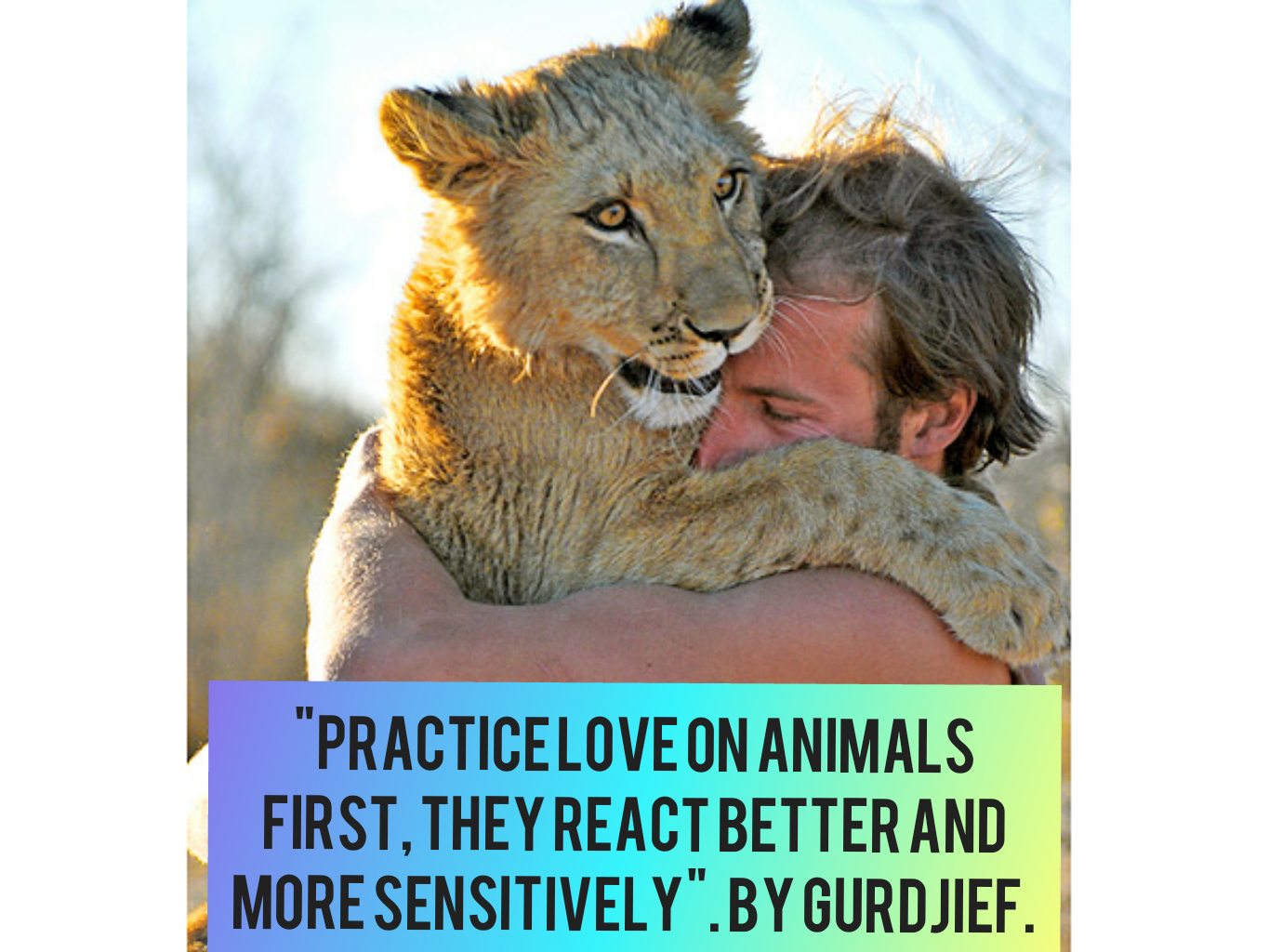 """Practice love on animals first, they react better and more sensitively."" By Gurdjief.[1365×1024]"