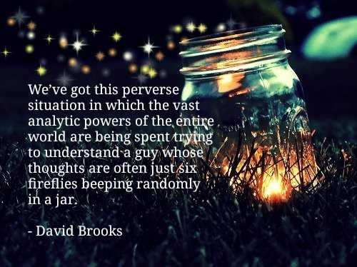 """…trying to understand a guy whose thoughts are often just six fireflies beeping randomly in a jar."" – David Brooks (500×374)"