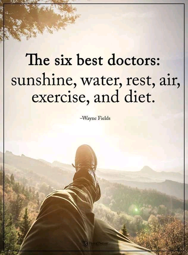 """The six best Doctor: Sunshine, Water,Rest,Air,Exercise And Diet"" – Wayne Fields [800×1020]"