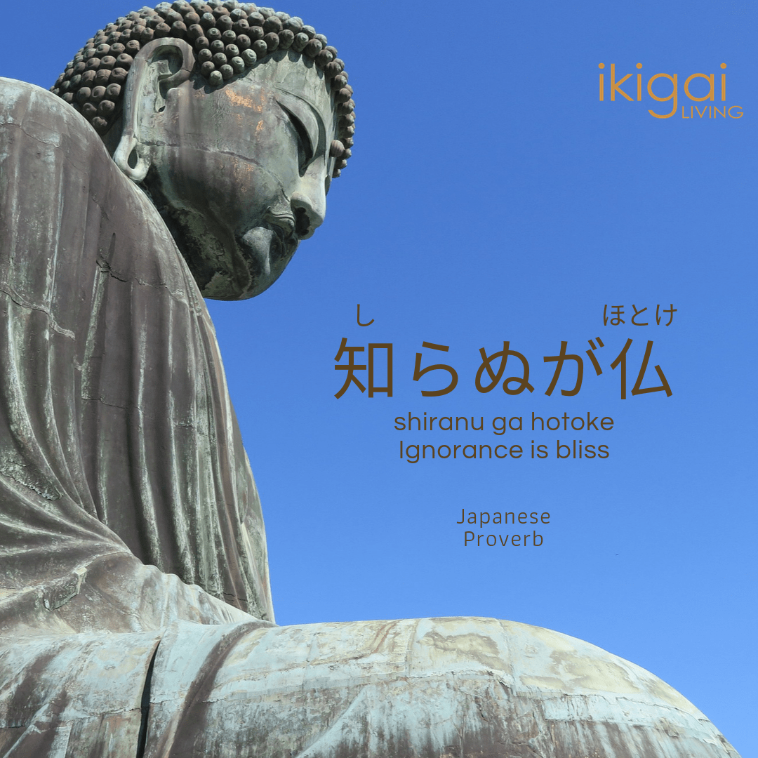 "知らぬが仏 (しらぬがほとけ or shiranu ga hotoke) Similar meaning in English: Ignorance is bliss However, the literal translation, ""not knowing is Buddha"" may be more accurate in that, to be Buddha is to not know. [1080×1080]"