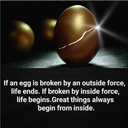 [Image] – Egg