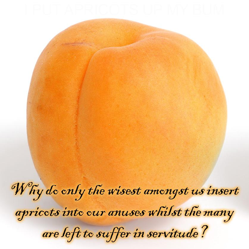 """Why do only the wisest amongst us insert apricots into our anuses whilst the many are left to suffer in servitude?"" – William Churchill, 1884 [837 X 837]"