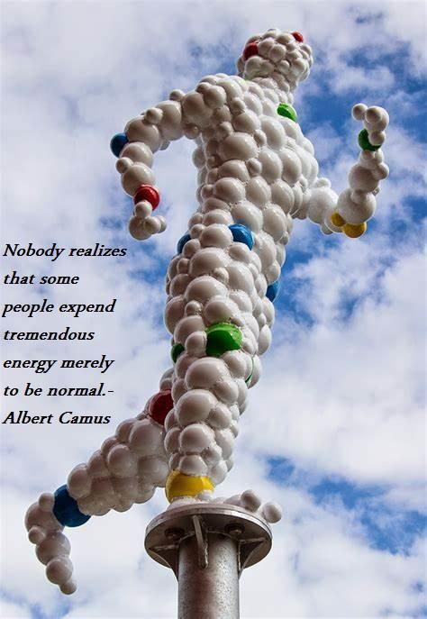 Nobody realizes that some people expend tremendous energy merely to be normal.Albert Camos(850×1200)