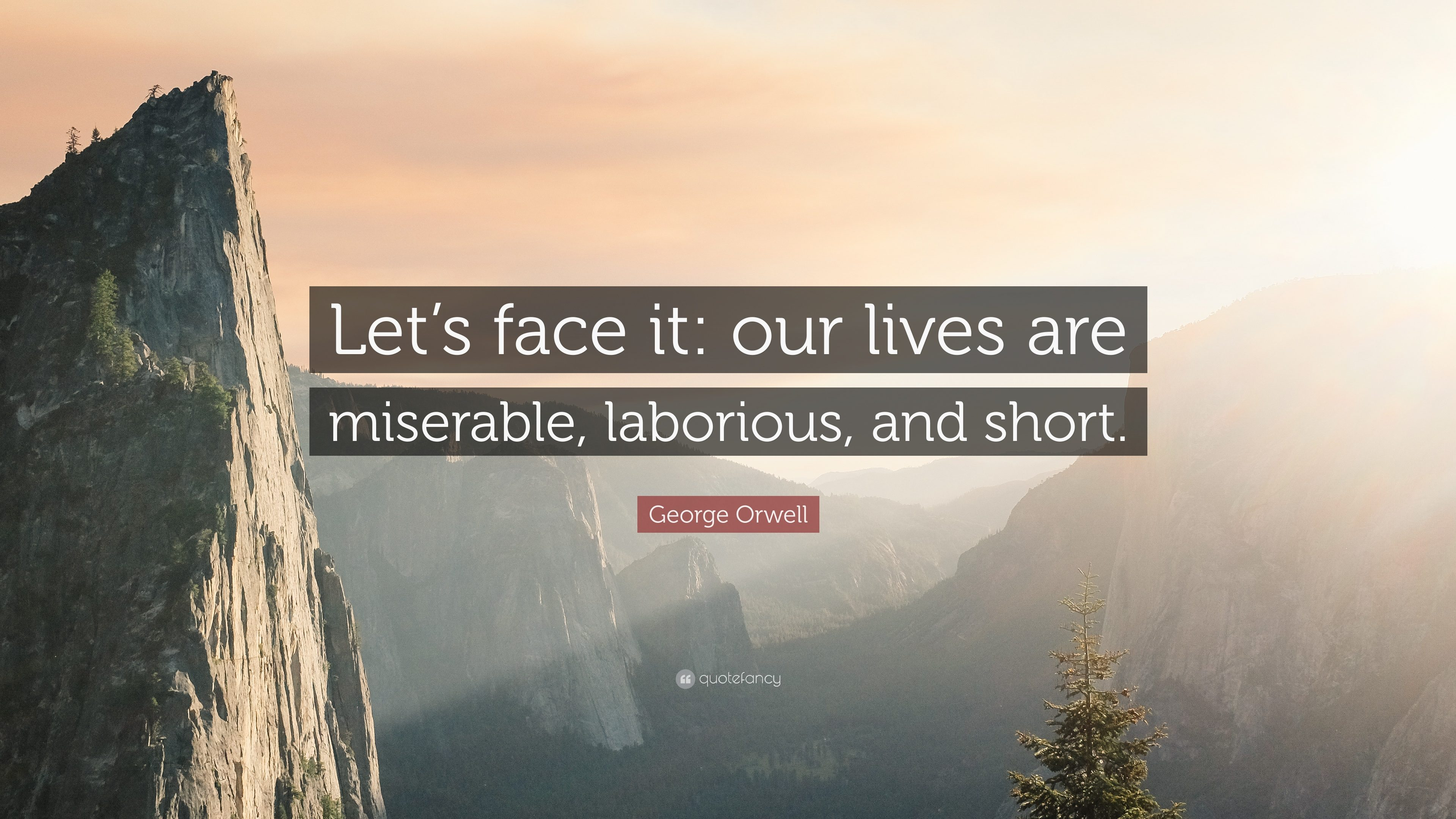 """Let's face it: our lives are miserable, laborious, and short"" – George Orwell in his novel 'Animal Farm.' [3840×2160]"