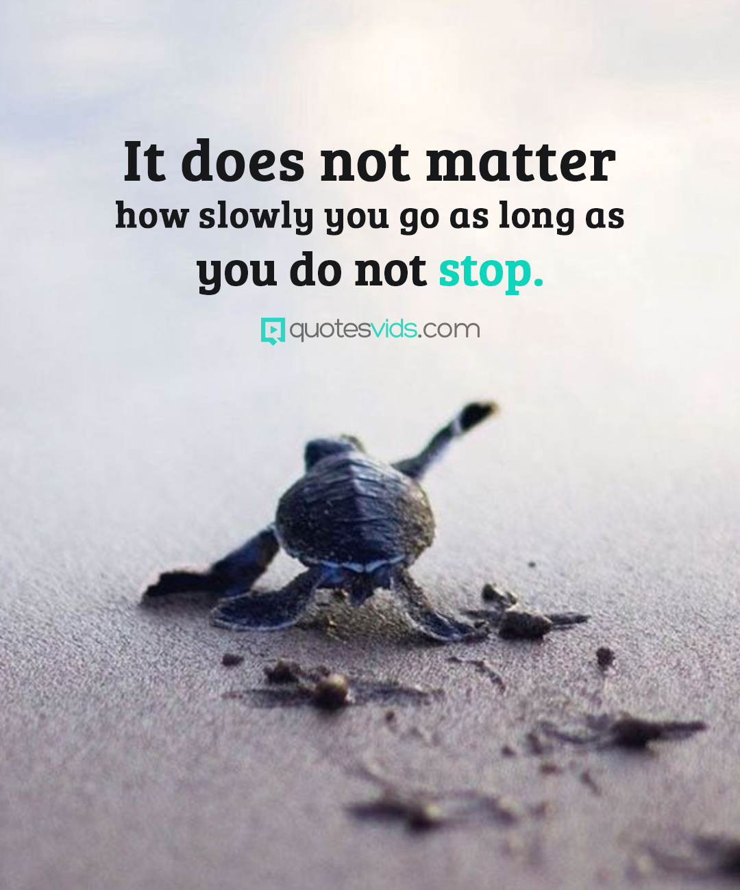 """It does not matter how slowly you go as long as you do not stop"" – unknown [1800×1300]"