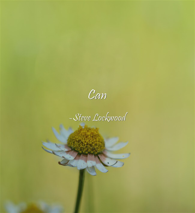 """Can"" -Steve Lockwood [650 × 710]"